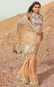 Teena Durani Sari 2017 in Peach Color