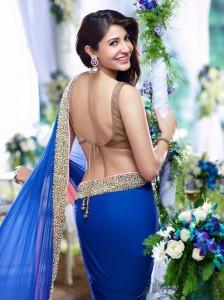 Celebrity Blouse Designs for Saree 2017