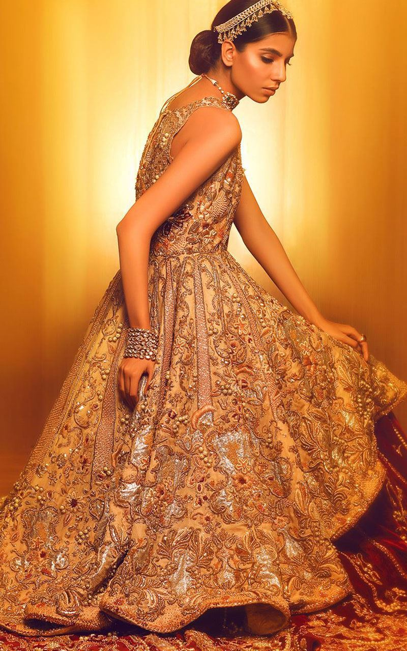 100+ Pakistani Bridal Dresses 2018 for Wedding Parties (5 ...