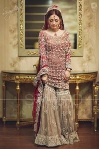 Pakistani Bridal Dresses for Weddings