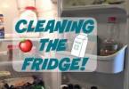 Easy Fridge cleaning tips