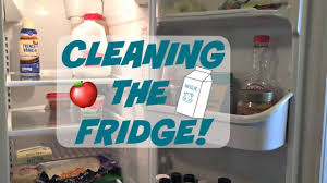Easy Fridge cleaning tips